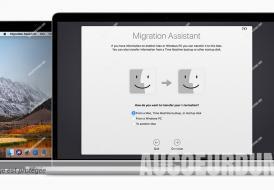 l'assistant de migration ne fonctionne pas