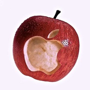 formation-apple-seniors-domicile